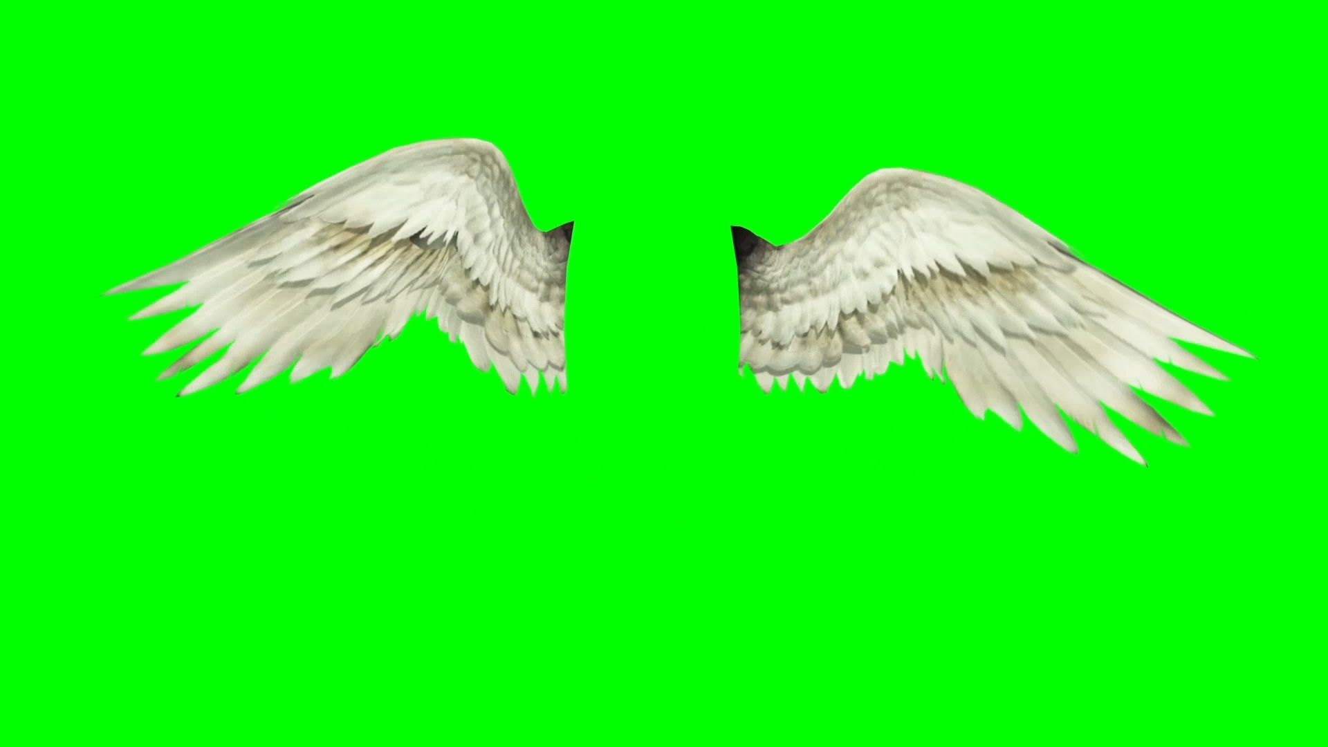 how to make flapping wings