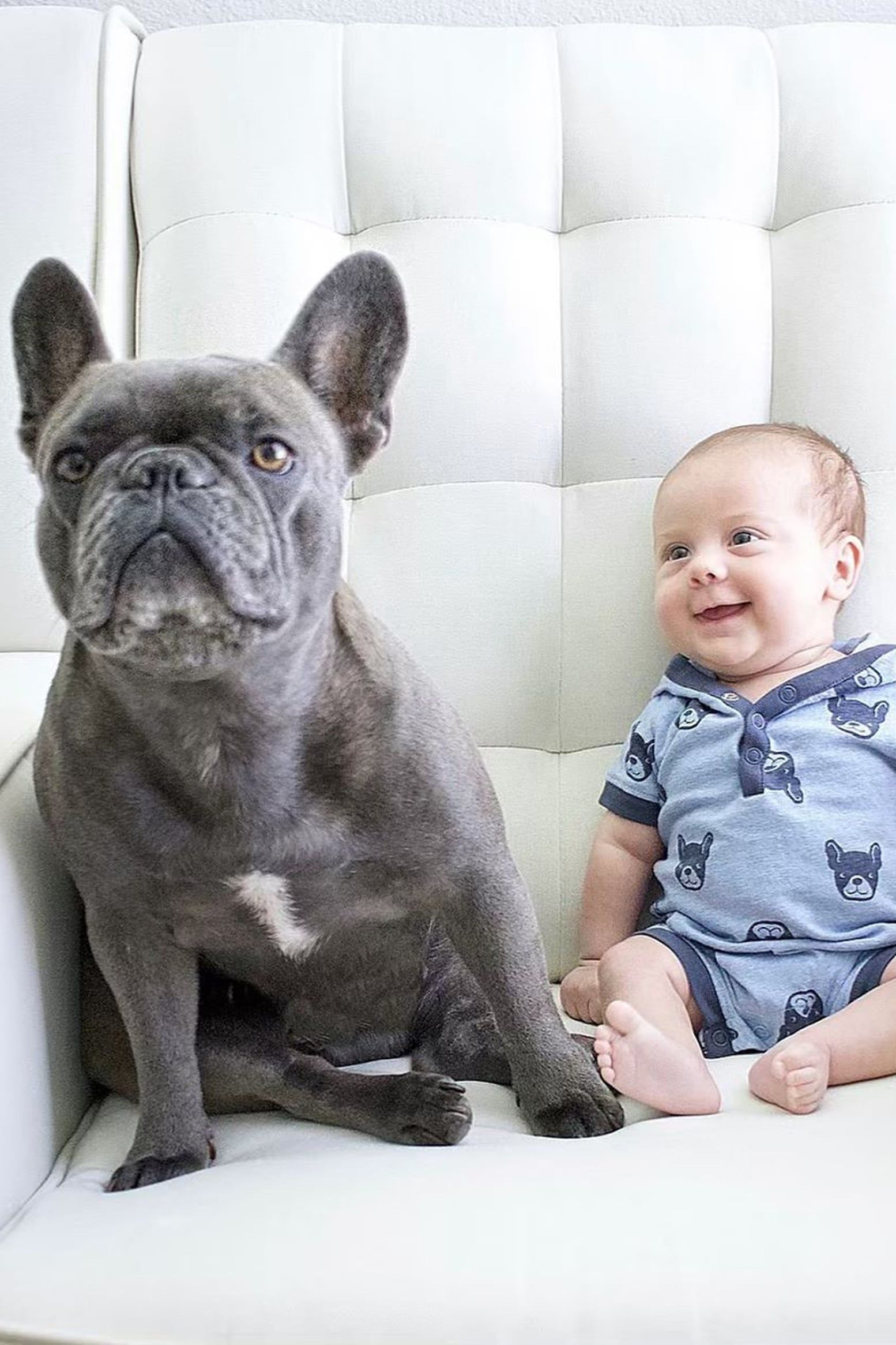 24 Photos Of Frenchies With Babies That Will Cause You To Squeal