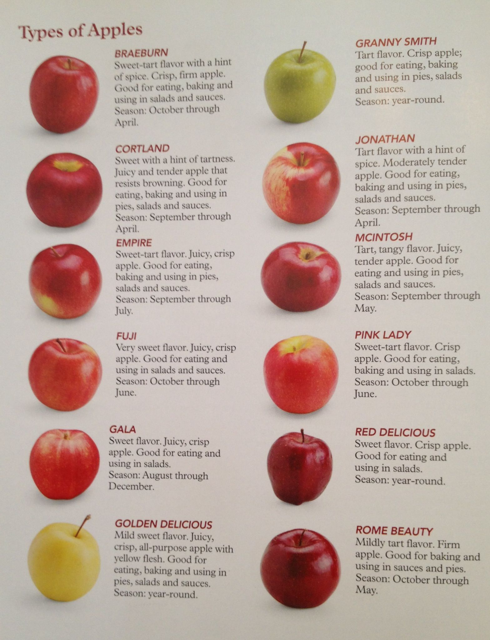 different types of apples cooking uses for them pretty nifty different types of apples cooking uses for them