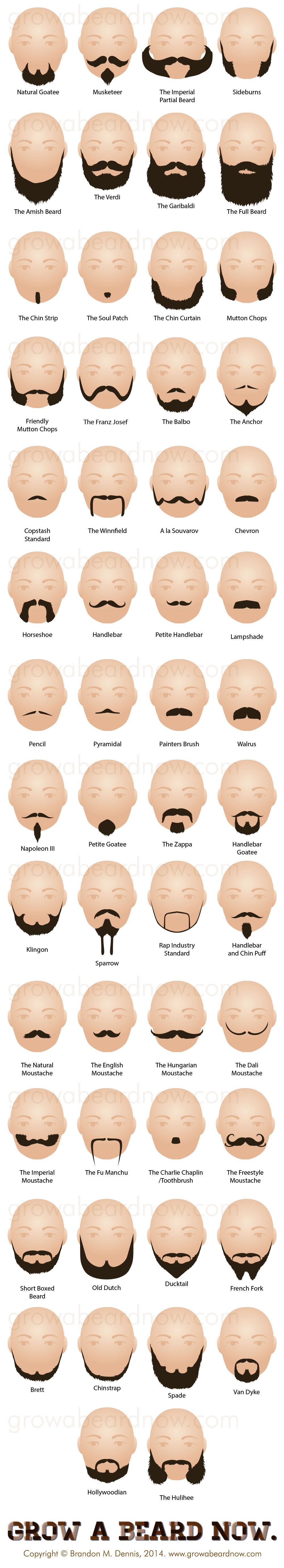 Different types of haircuts for men  facial hair styles  a new collection of all the beard styles