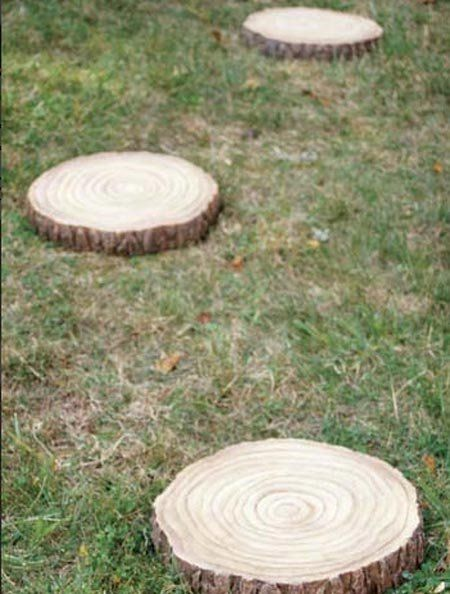 Stepping Stones Out Of Tree Stumps