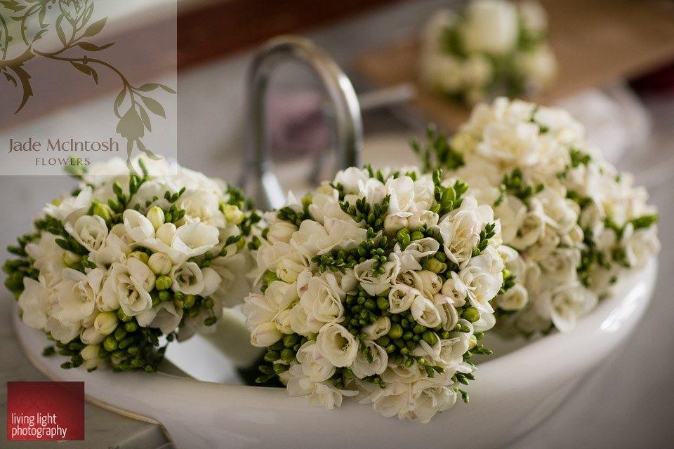 All White Freesia Bouquets Www Jademcintoshflowers Com Au Www Livinglightphotography Com Au Flower Bouquet Wedding Flowers Bouquet Freesia Bouquet