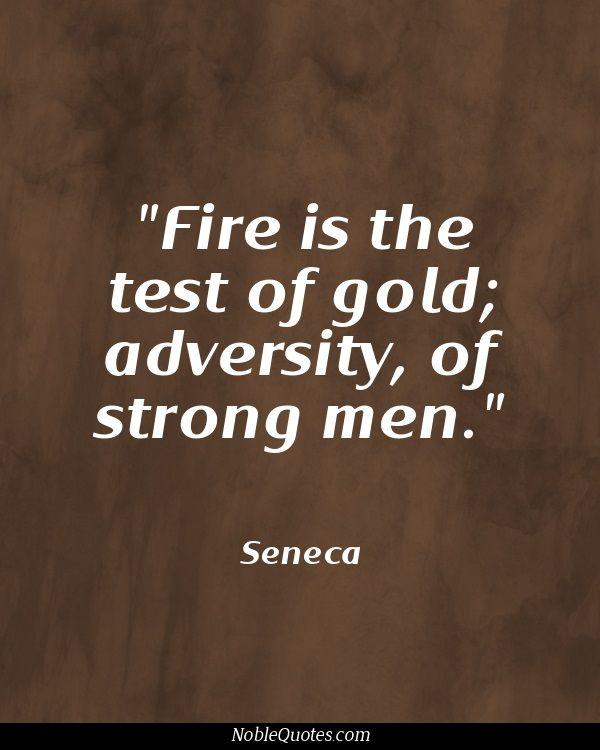Adversity Quotes Adversity