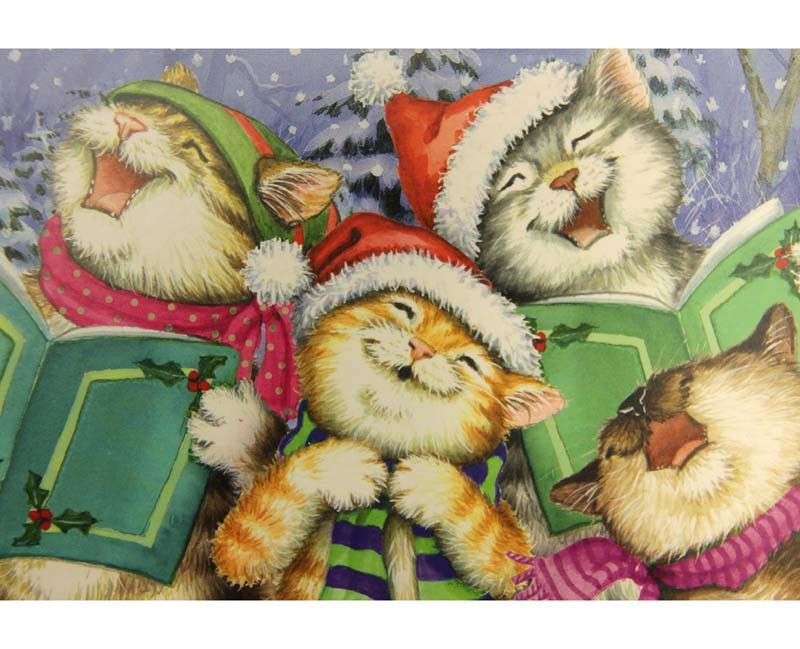 Boxed Cat Christmas Cards.Box Of 10 Christmas Cards Cats Christmas Cat Christmas Cards