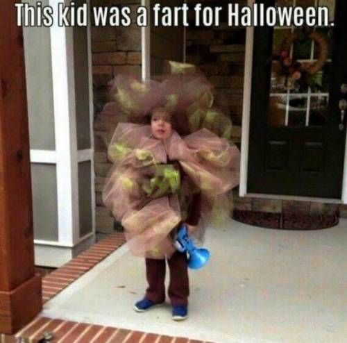 Pin On Funny Pictures