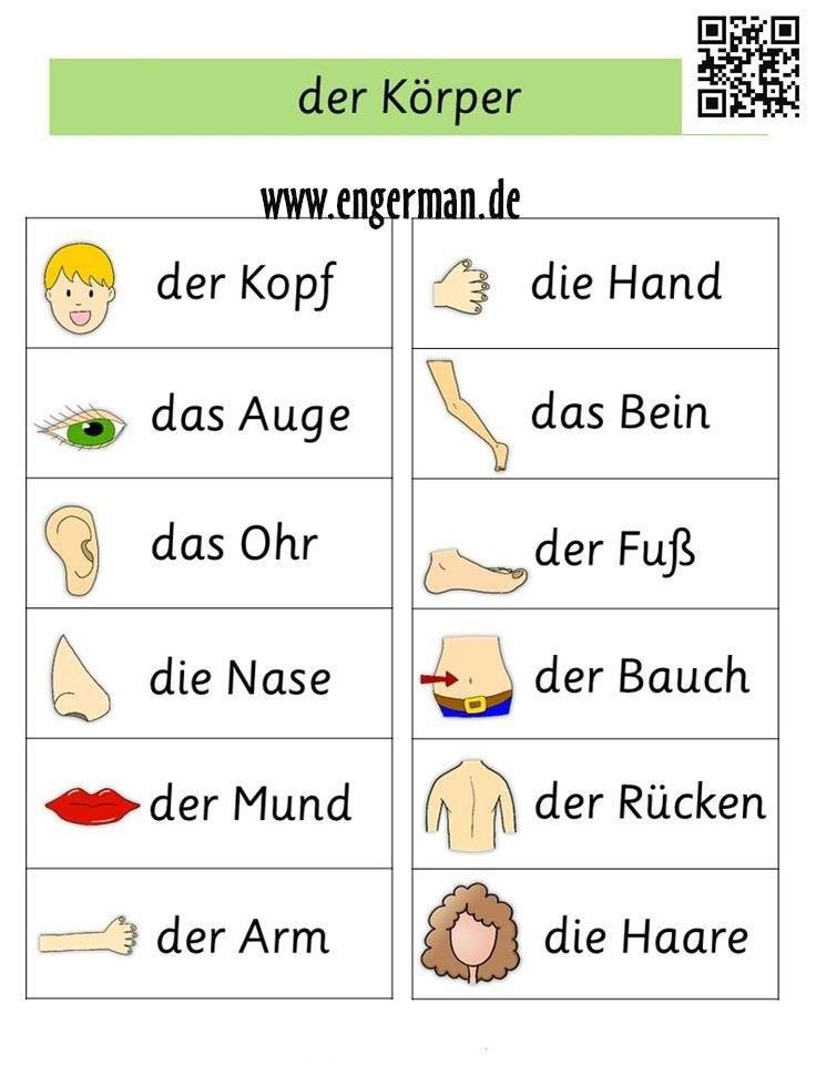 German Body parts | Deutsch Lehrnen | Pinterest | German, Language ...