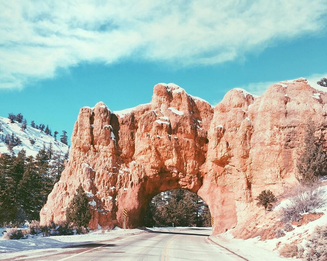 Bryce Canyon welcomes everyone with this amazing entrance  #iphoneonly Re-post by Hold With Hope