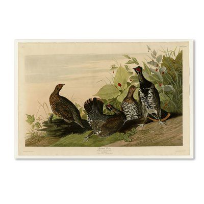 Trademark Fine Art Spotted Grouseplate 176 Print On Wrapped