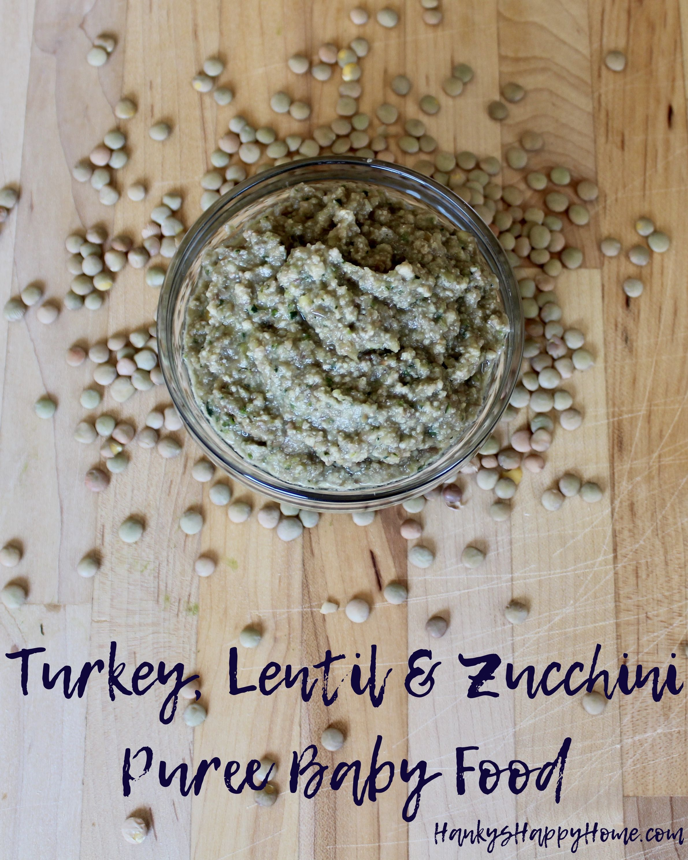 Turkey lentil zucchini puree baby food recipe lentils turkey lentil zucchini puree baby food forumfinder