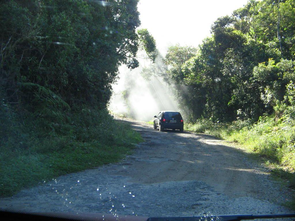 Começo da estrada para Vista na estrada para o Pico das Prateleiras, entrada de Itamonte - Parque Nacional de Itatiaia - RJ (Foto: Orlando MFN 2008)