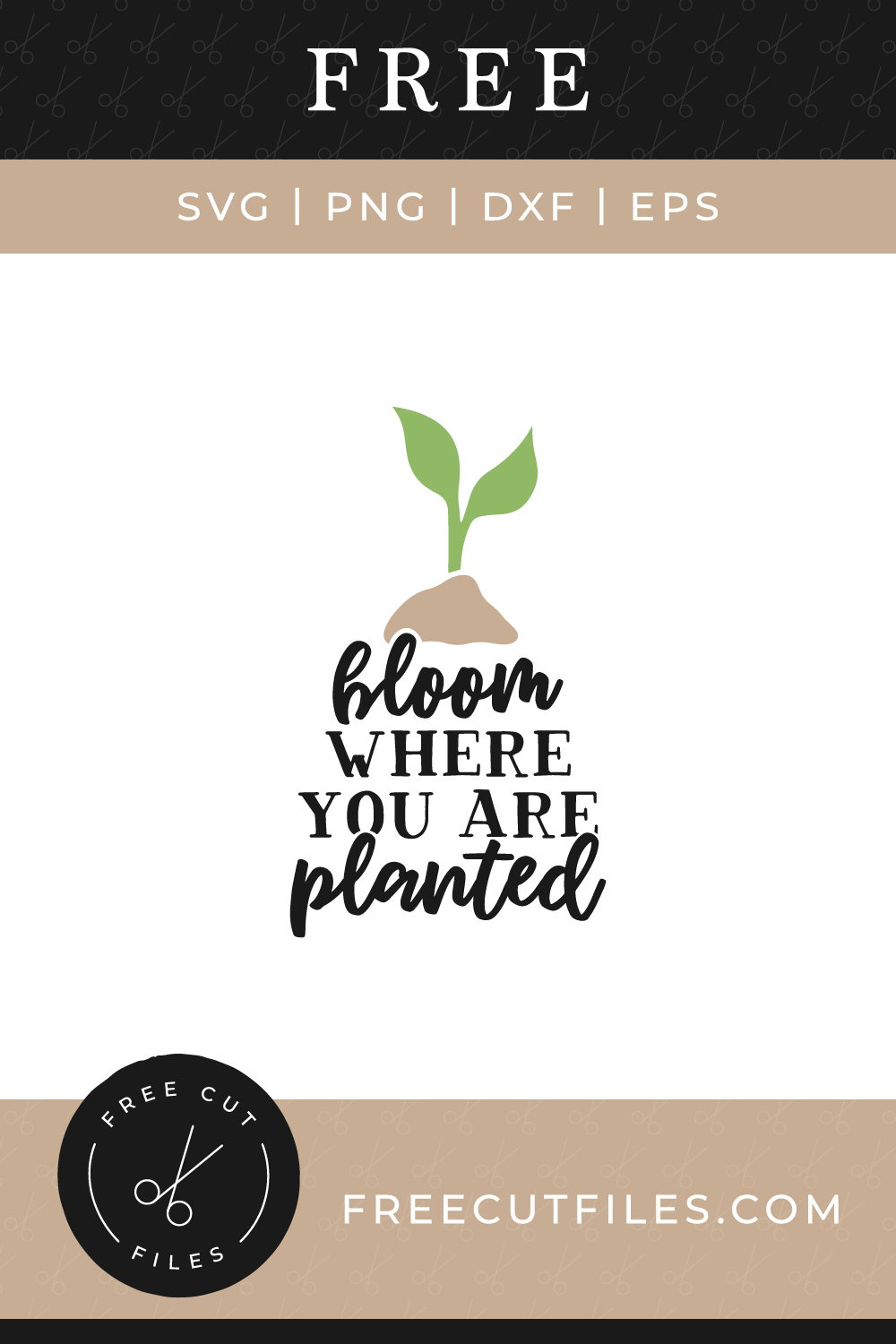 Bloom Where You Are Planted In 2020 Free Svg Bloom Where You Are Planted Svg Quotes