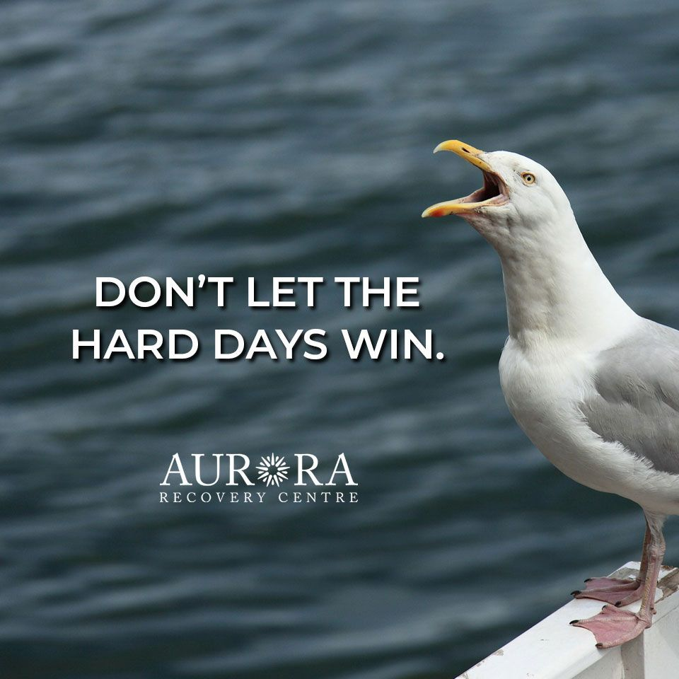Don't let the hard days win.  #Recovery #KeepItSimple #Addiction
