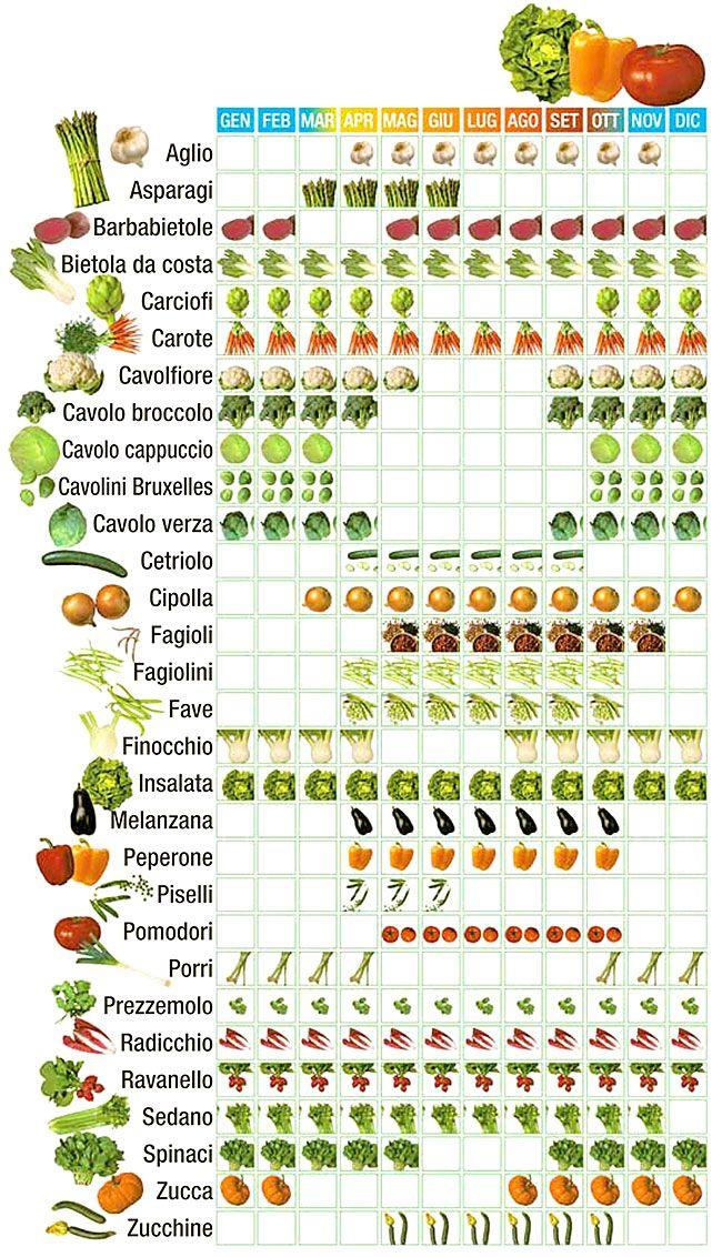 Calendario verdura di stagione Verdure, Progettazione di