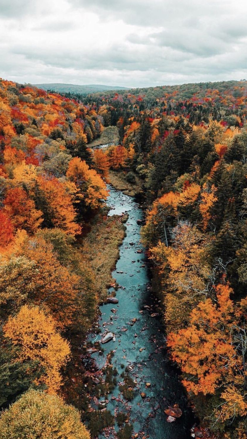 New The Most Good Looking Fall Lock Screen for iPhone 11