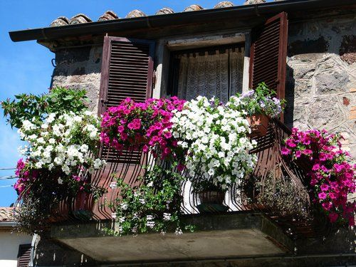 Balcony, garden, flowers