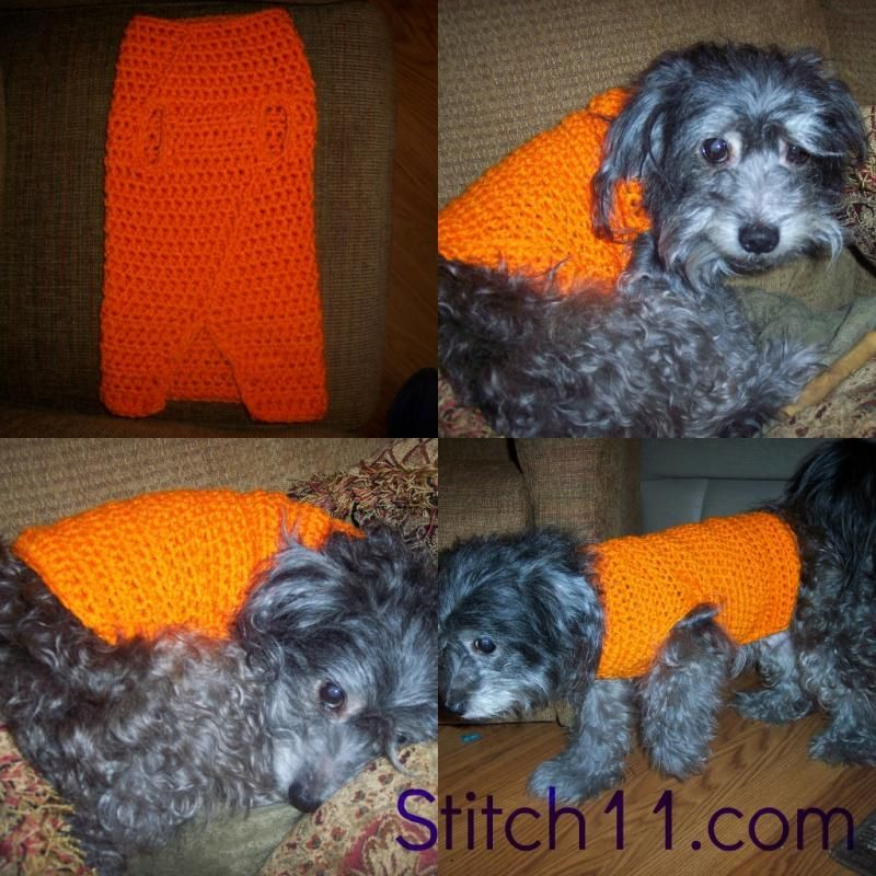 Sweater for Avis « The Yarn Box The Yarn Box | Pet Crochet Patterns ...