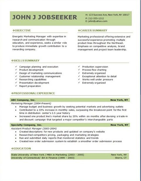Free Professional Resume Templates Downloads Professional Resume - Summary Report Template