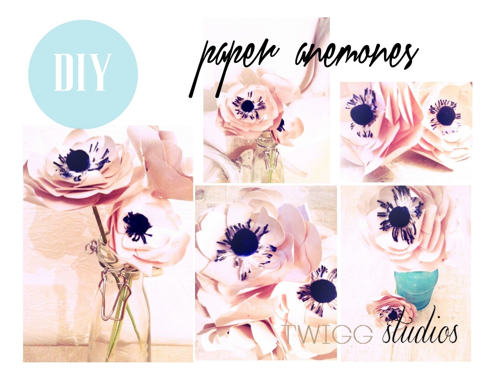 Twigg studios diy paper anemones  Things I Want to Make