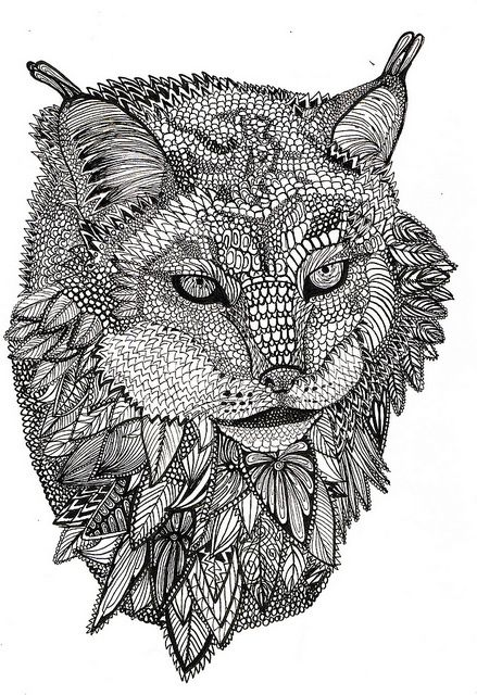 Lynx | Animal coloring pages, Cat coloring page, Coloring ...