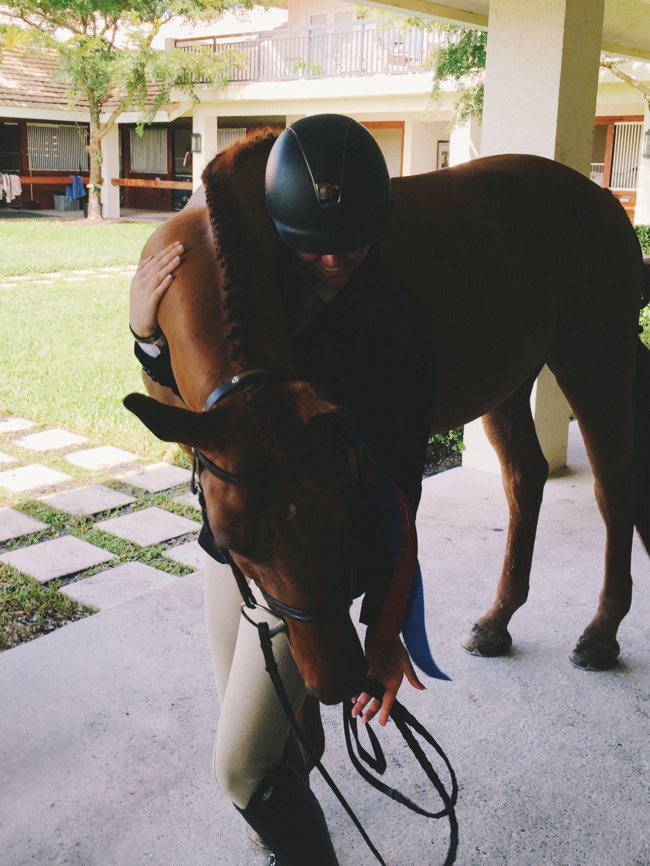 horsesofinstagram | Tumblr | HORSES I LOVE | Horses ...