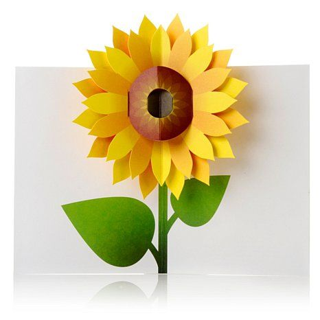 Kirigami pop up cards moma design store set of 6 sunflower pop up moma sabuda sunflower pop up cards greetings thank you get well stationery gift m4hsunfo Image collections