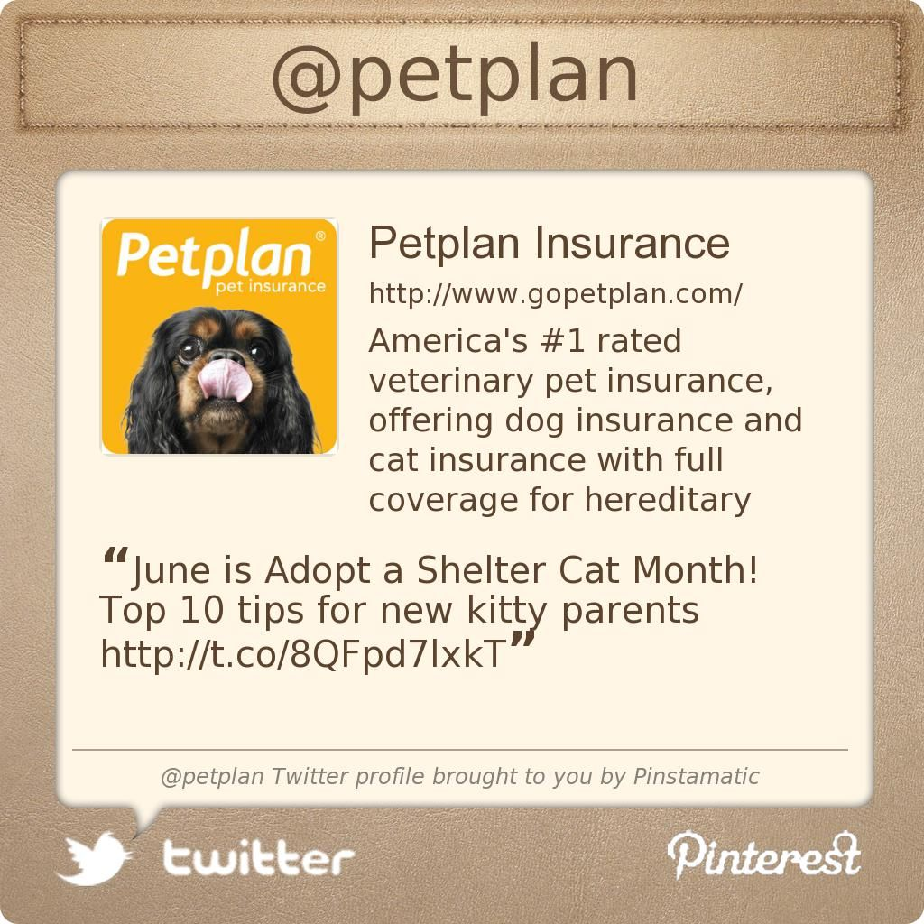 Follow Petplan Pet Insurance on Twitter for uptothe