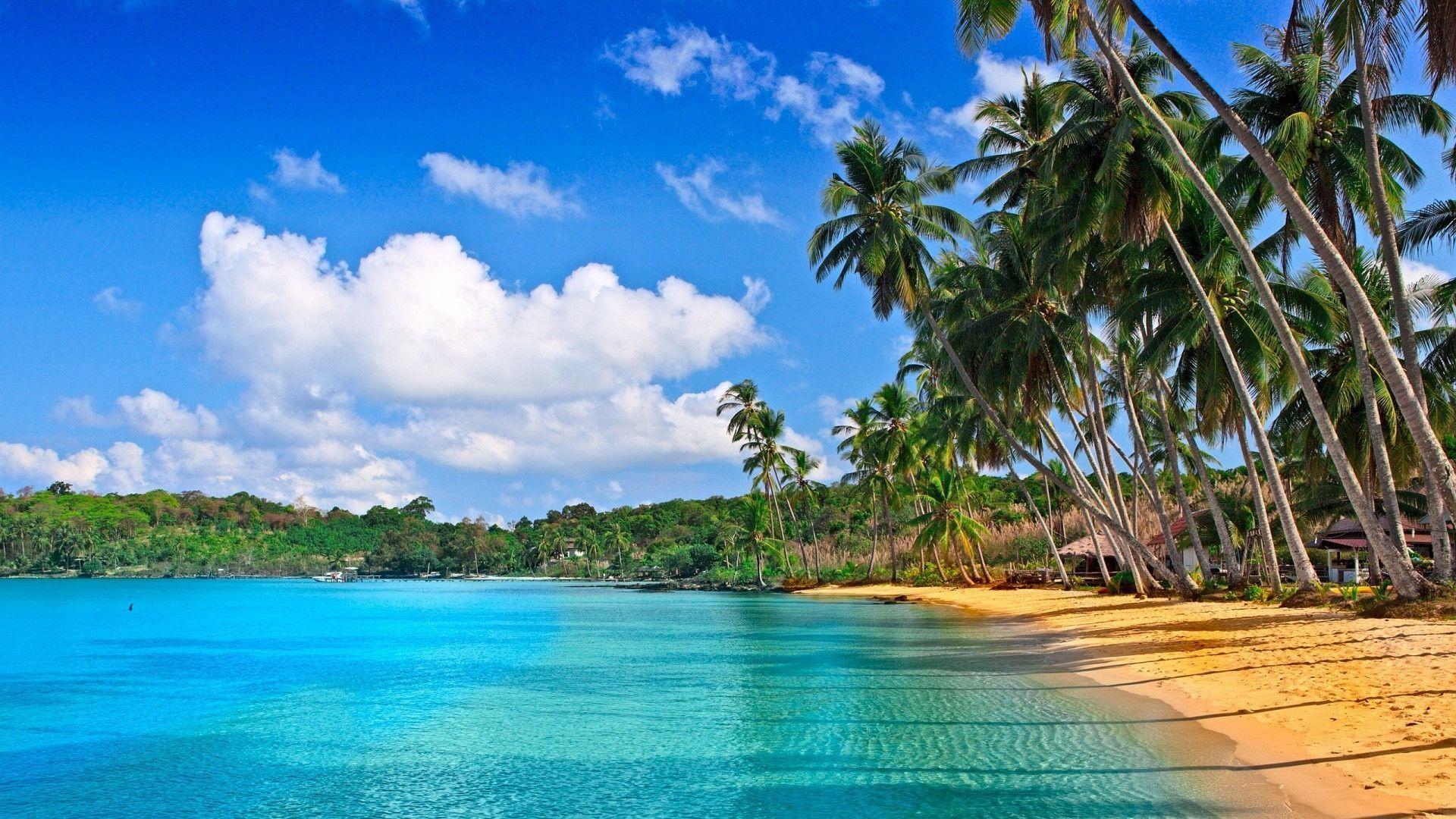 full hd 1080p beach