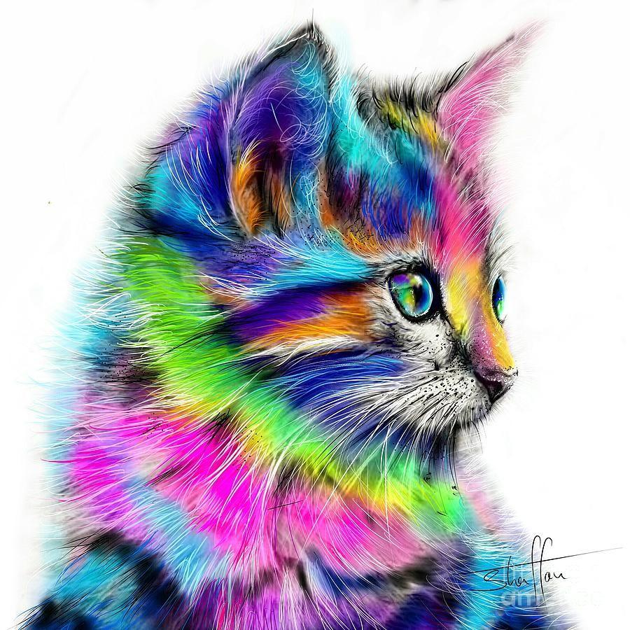 Rainbow Cat by Shaff Oceans