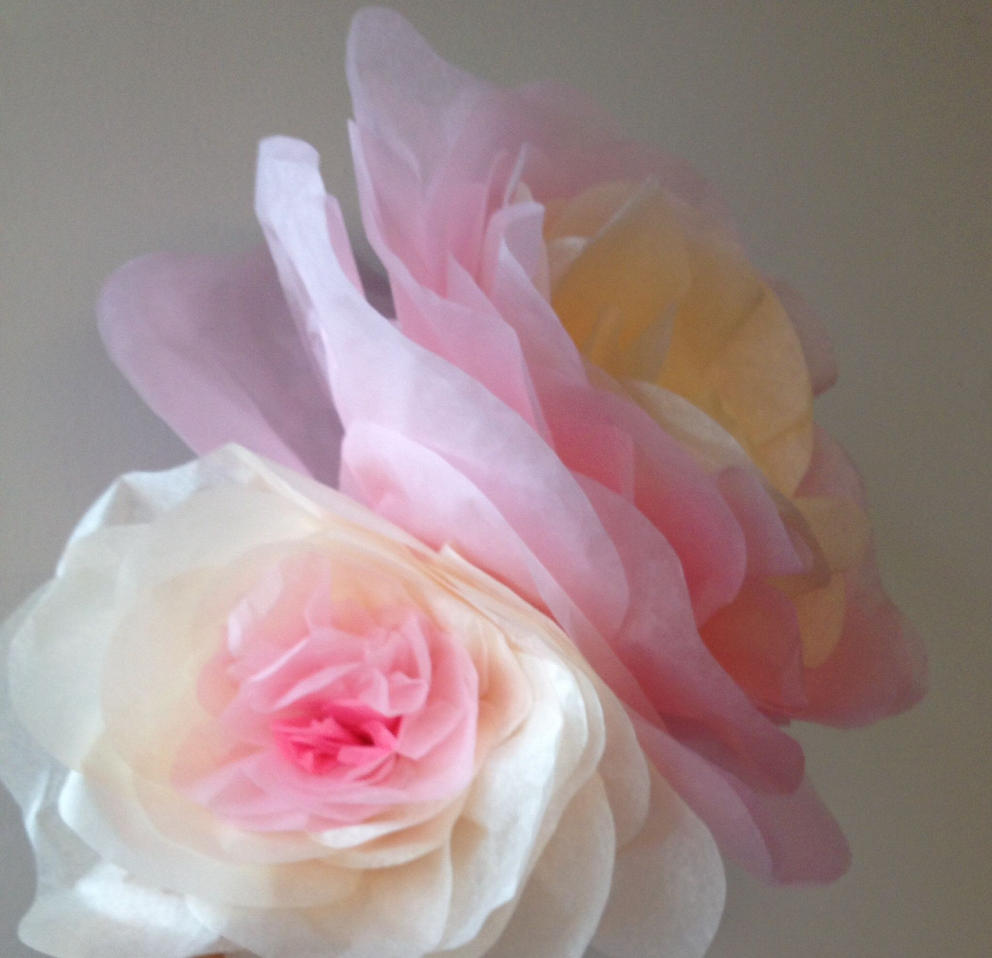 Paper flowers made out tissue paper colours white cream paper flowers made out tissue paper colours white cream light rosa made by anna maria rnsch barcelona mightylinksfo