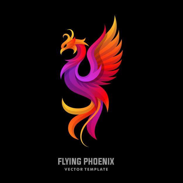 Phoenix Concept Designs Illustration Vector Template
