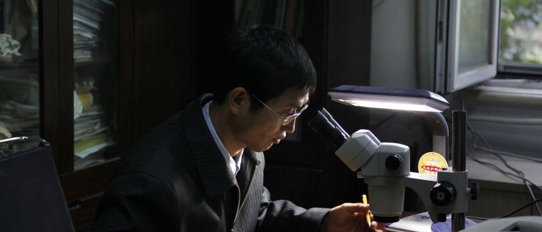 InfoNavWeb                       Informação, Notícias,Videos, Diversão, Games e Tecnologia.  : Cientistas chineses revelam espécie de fóssil 'Bab...
