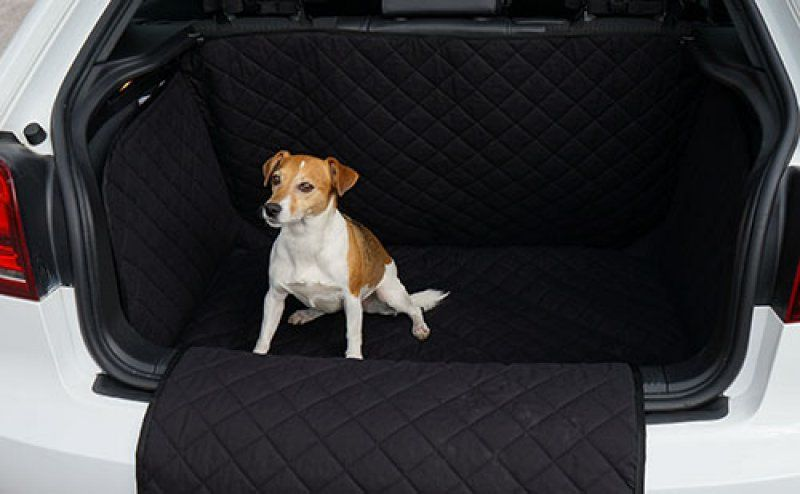 Quilted Pet Dog Heavy Duty Boot Liner Protector For Ford Focus Hatchback 2011 On