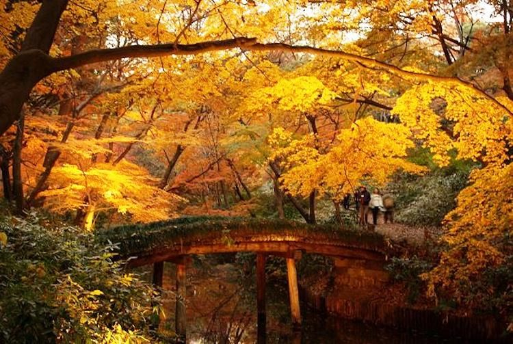 The World S Five Most Beautiful Gardens Famous Places Japan And Tokyo