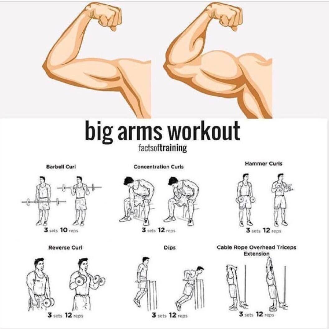 Rutinas para bajar de peso en el gym hombres guapos