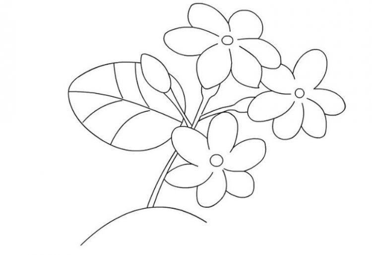 25 Gambar Kartun Aneka Bunga 39 Gambar Sketsa Bunga Indah Sakura Mawar Melati Download 60 Gambar Kartun Bunga Warna Warni Koleks Di 2020 Bunga Sketsa Bunga Kering