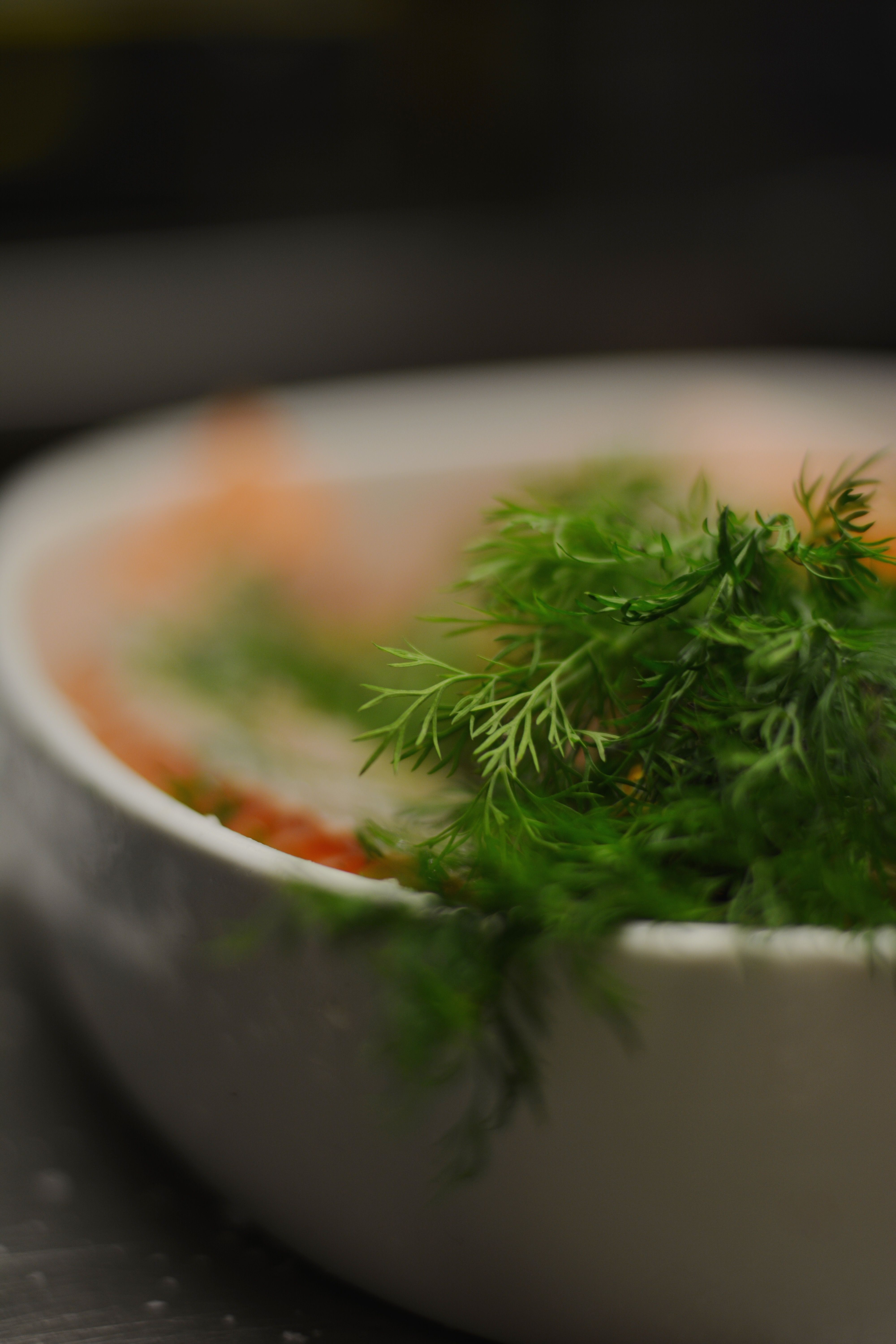 Fresh local cured salmon with dill and sambuca food pinterest food forumfinder Images