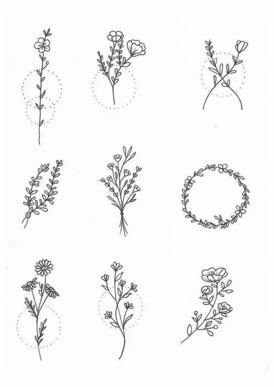 30 Ways to Draw Plants & Leaves -   10 plants Drawing simple ideas