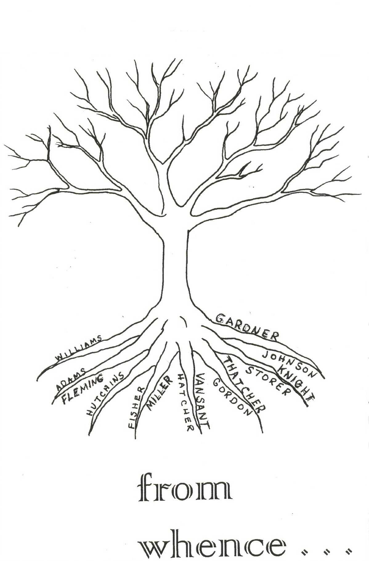 Image Of My Familly Tree Roots And Branches