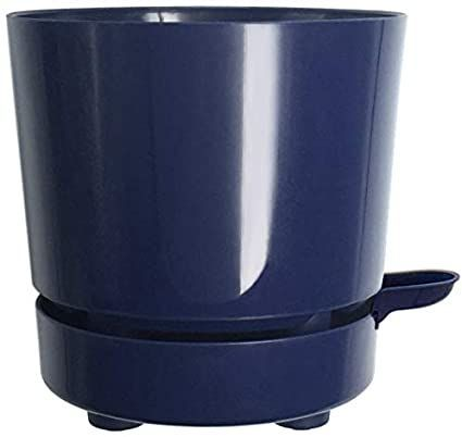 6 Self Watering + Self Aerating High Drainage Deep Reservoir Round Planter Pot Prevents Mold, Root Rot & Soil Fungus in Herbs, Succulents, for Indoor & Outdoor & Windowsill Gardens (Blue)#aerating #blue #deep #drainage #fungus #gardens #herbs #high #indoor #mold #outdoor #planter #pot #prevents #reservoir #root #rot #soil #succulents #watering #windowsill
