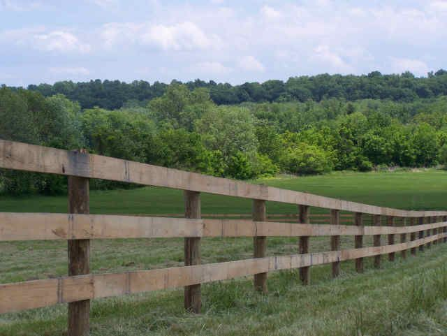 Image result for types of horse fencing Horses Pinterest Horse