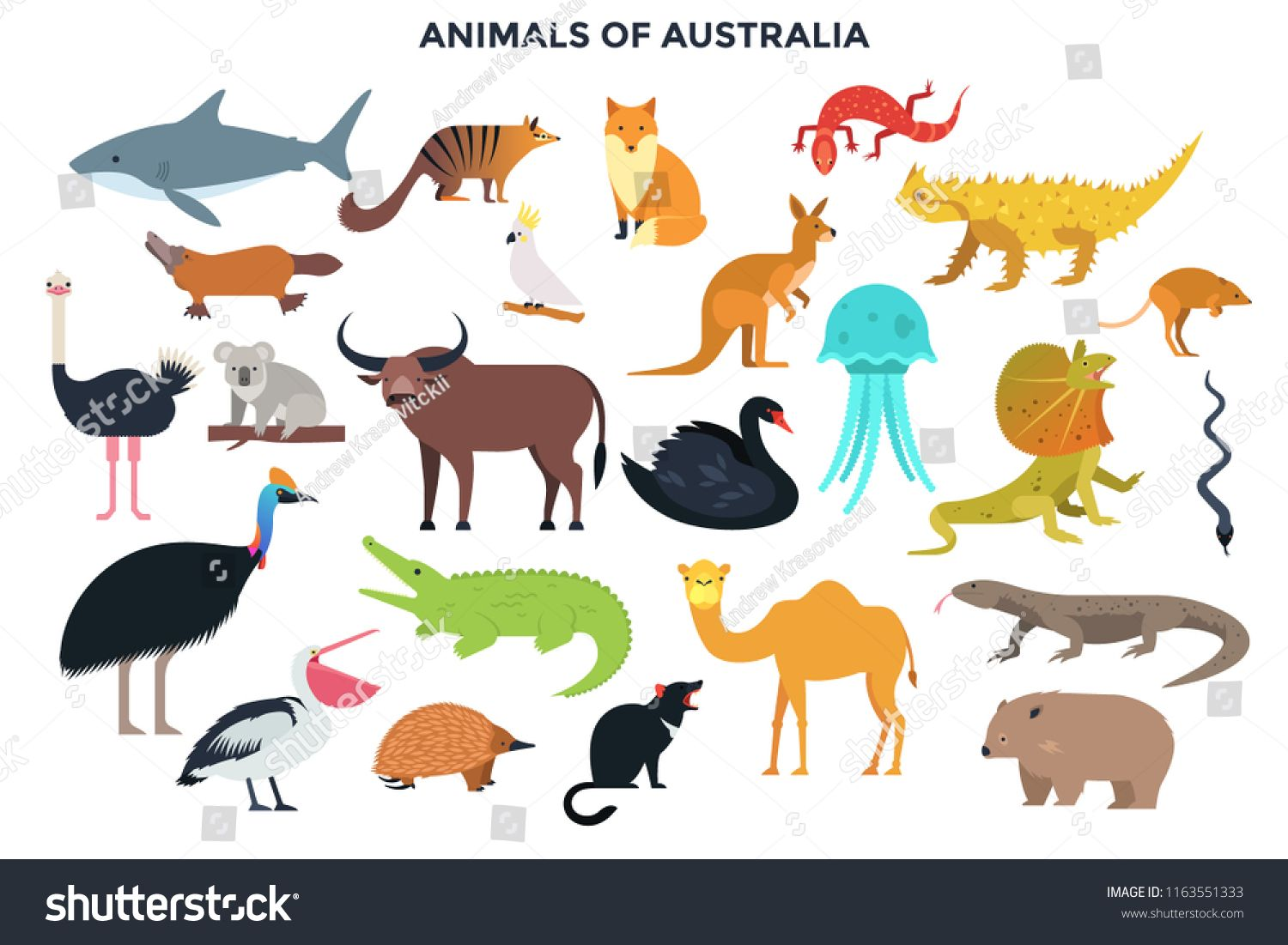 Big Collection Of Cute Funny Wild Animals Of Australia Bundle Of Adorable Cartoon Australian Mammals Birds Funny Wild Animals Australia Animals Animals Wild