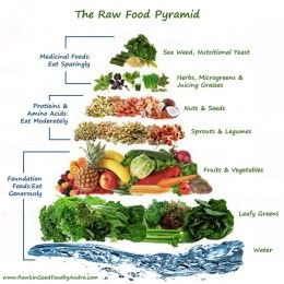 the raw food detox diet pdf