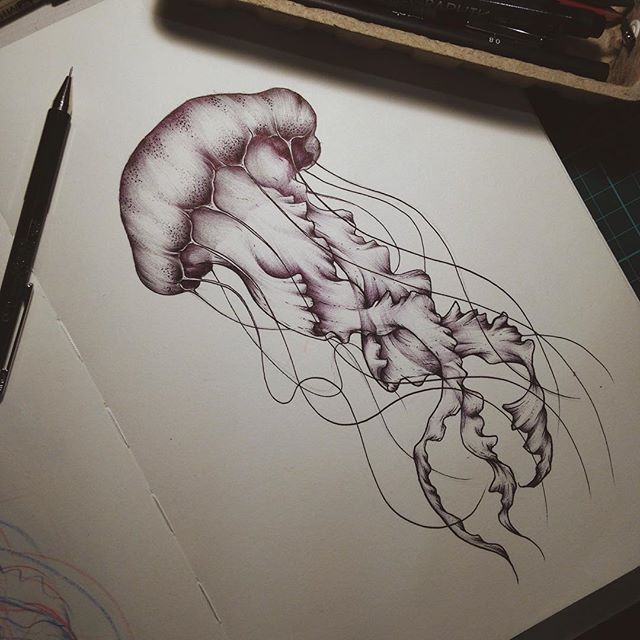 I'm all about the sea creatures lately  #jellyfish #illustration #sketchbook #drawing #biro #linework #shading #nature #sketch #jellyfishtattoo #instaart #drawingoftheday #blackwork #penandpaper #tattooapprentice