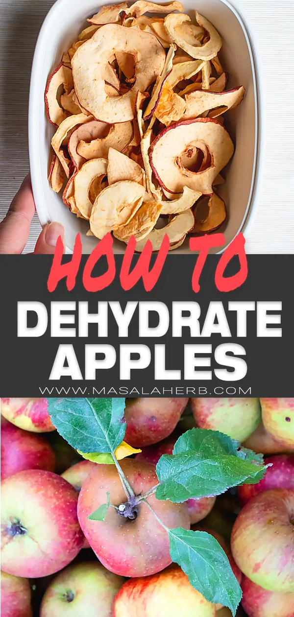 Guide To Dehydrating Apples How To Make Dried Apples A Healthy Snack All Natural And Without Artific Dehydrated Apples Healthy Snacks Dried Apples