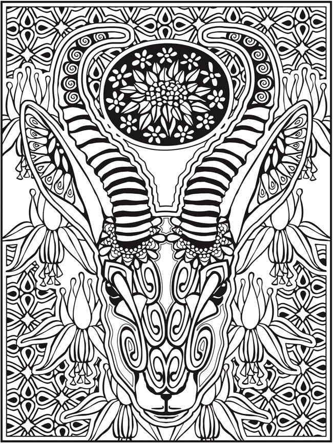 Welcome To Dover Publications Creative Haven Animal Calaveras