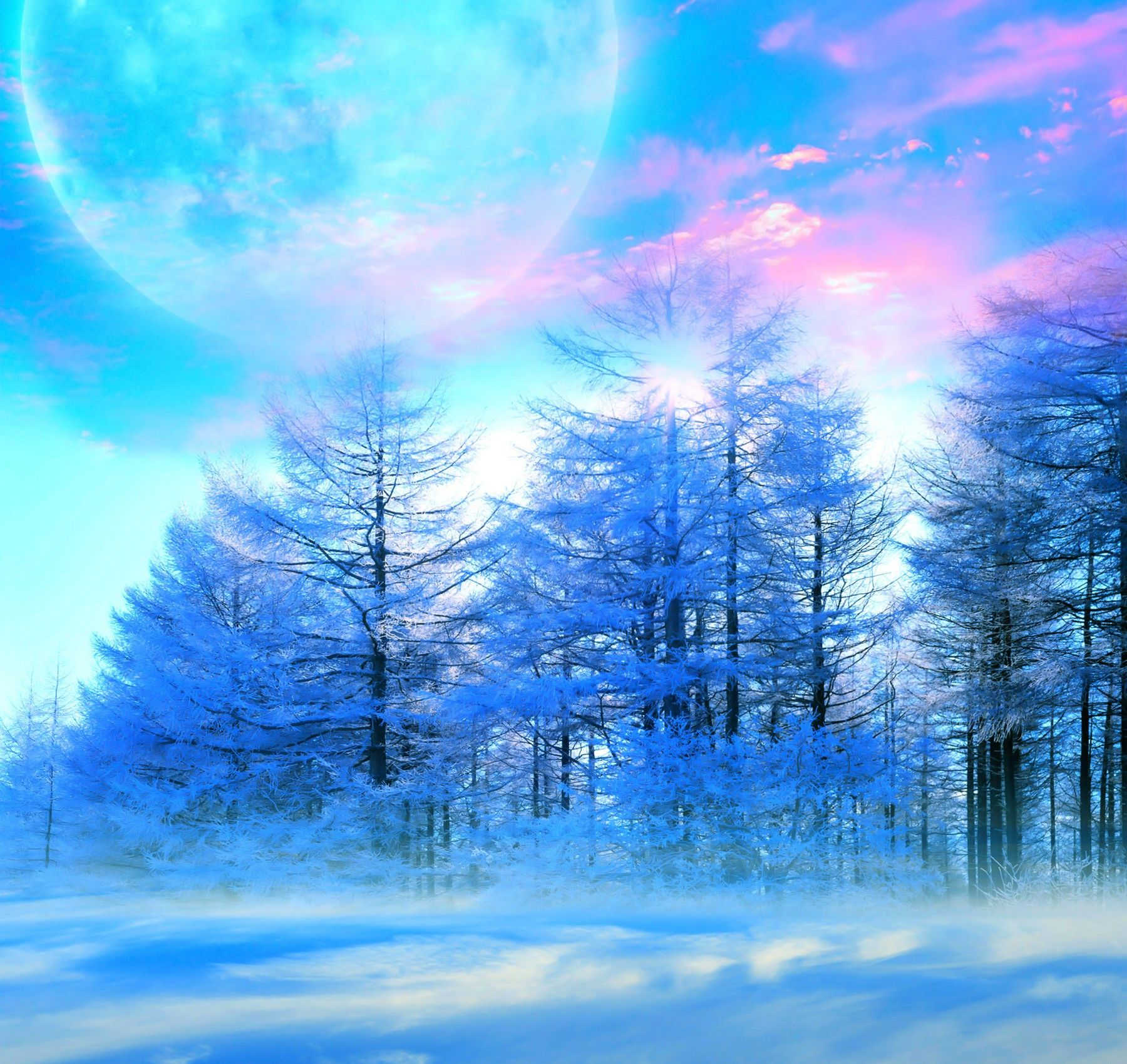 Winter Sky Nature Trees Snow Moon Beautiful Blue Mist Pink