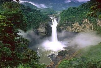 Save Yasuni - ver más en http://101lugaresincreibles.com/2012/09/yasuni-una-selva-poblada-de-criaturas-extranas-en-ecuador.html