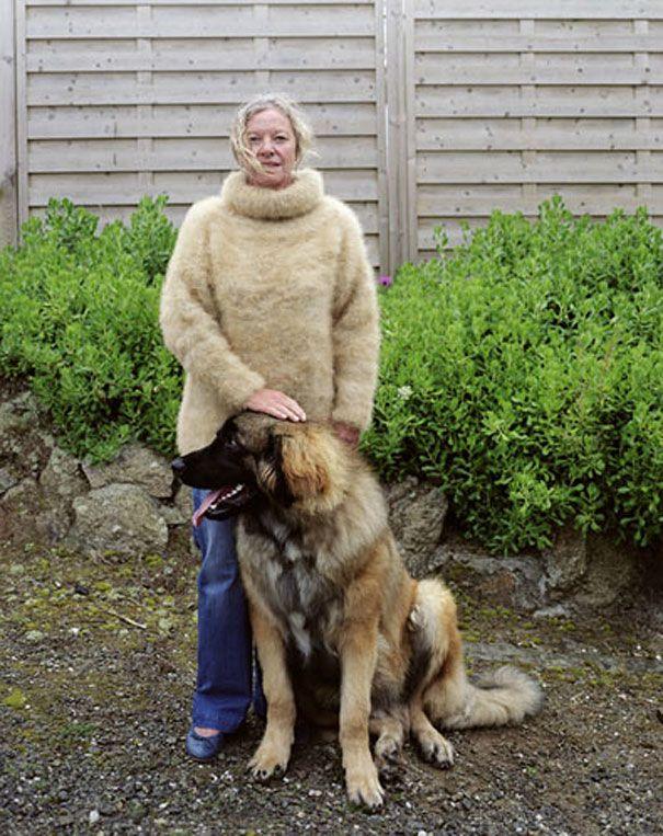 dog-wool-erwan-fichou-4