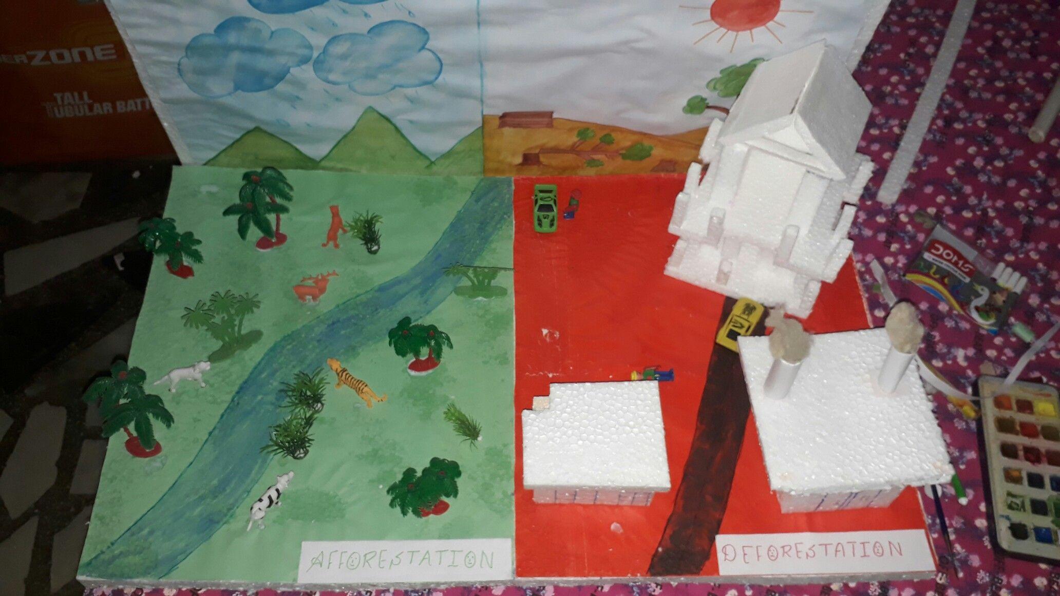 Deforestation Social Science Project Model For Science
