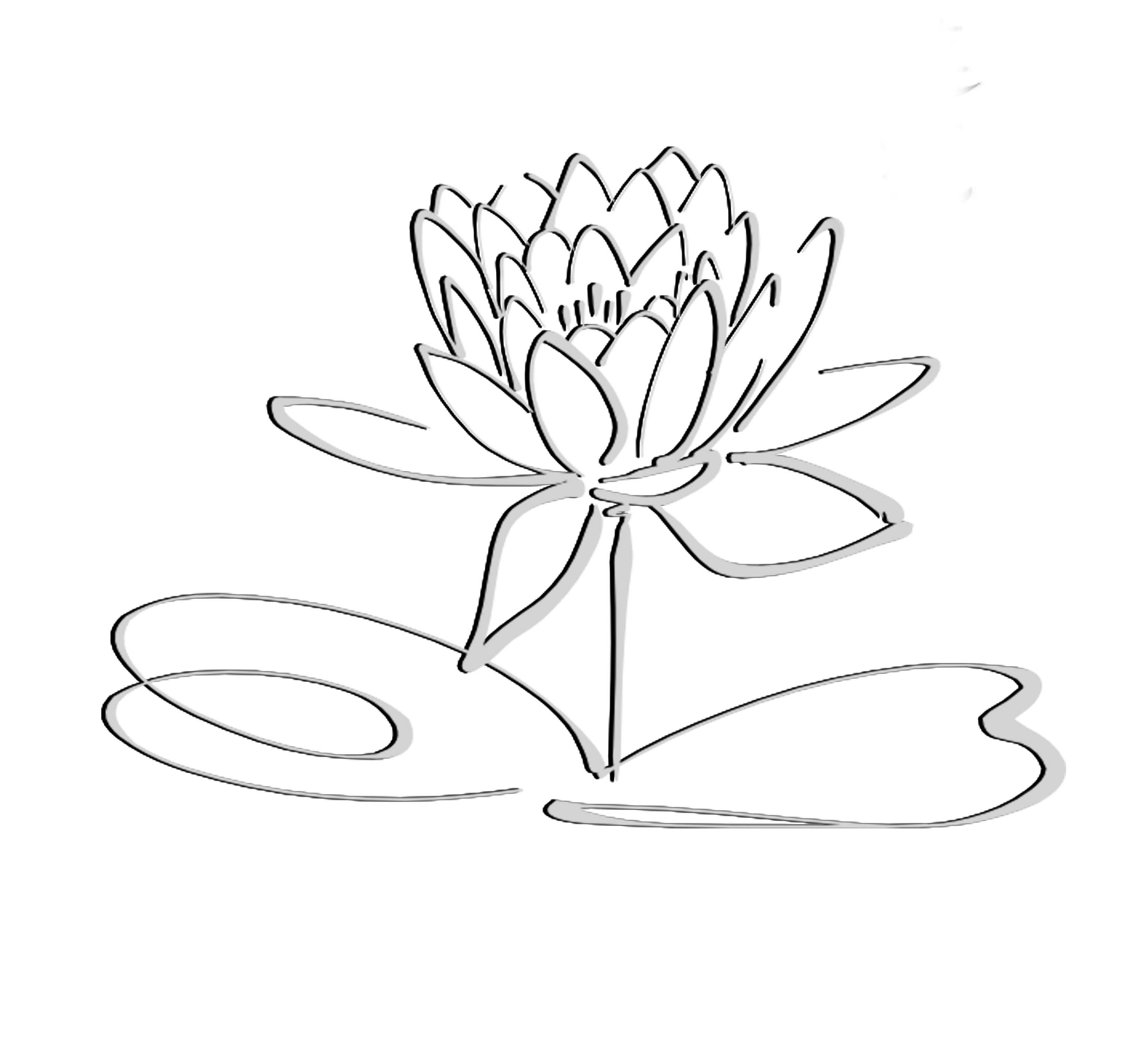 Line Drawings Of Flowers Lotus Logo Black Grayshadow Flower Only
